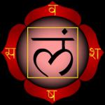 Muladhara - Chakra da raíz